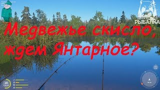 Русская рыбалка 4. Фидер на Медвежьем. Проверка клева.