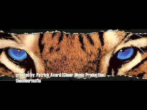 Cheer Athletics Pumas 2013 2014 (large coed restricted 5)