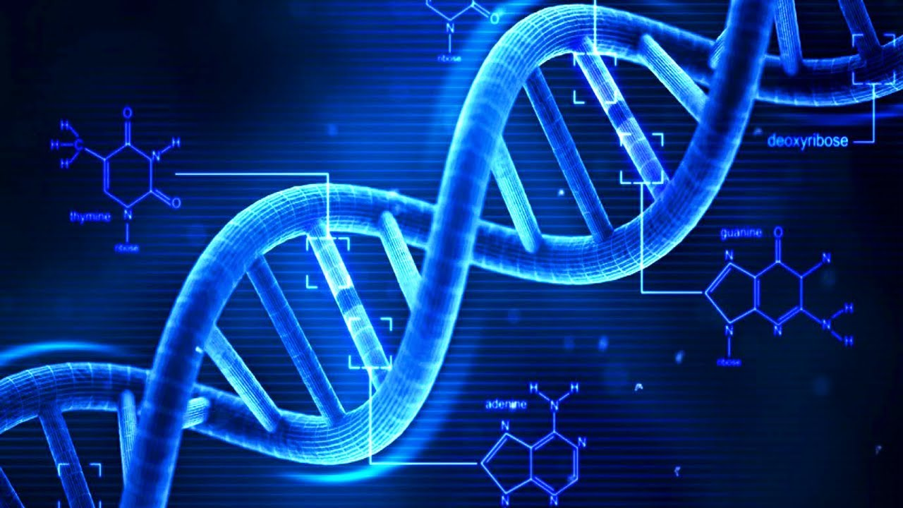 Image result for dna, cool tech facts