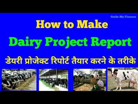How to make Dairy Project Report | Complete Guide on Dairy P