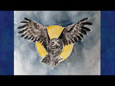 Owl Totem: Power Animal Meaning of Owl