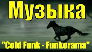Конь скачет галоп лошади красивая лошадь видео Гитара музыка