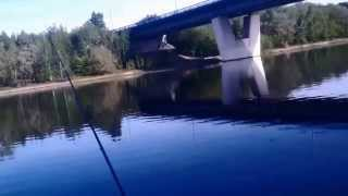 Видео отзыв о фидере Kaida Spirado 3 метра и 3,3 метра, тест 60-150 гр