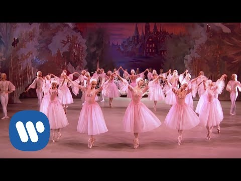 The Nutcracker HD - Valery Gergiev / Mariinsky Ballet & Orchestra