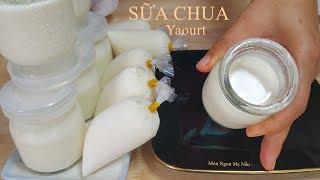 Cách Làm SỮA CHUA Mịn Dẻo Ngon Cực Dễ (yaourt