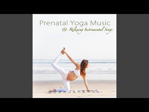 The Piano (Pregnancy Music)
