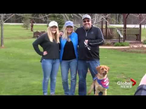 Disabled dog finds his forever home