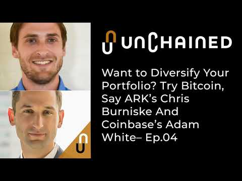 Want To Diversify Your Portfolio? Try Bitcoin, Say ARK's Chris Burniske And Coinbase's Adam White