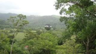 Las Margaritas- Veracruz