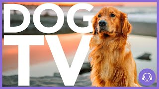15 Hour Dog TV  AllNew Adventure Experience for Dogs!