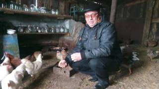 ОТЗЫВЫ О КОМПАНИИ МИР КОРМОВ г  Москва