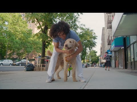 The Firsts: Getting a Dog | Presented by Abercrombie & Fitch