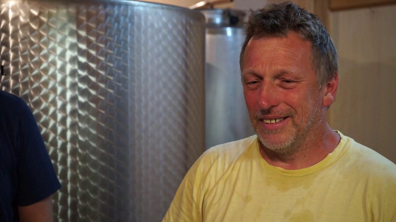 VIDEO: Drinking Slovenia's best natural wine