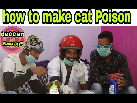 How to make cat Poison // Deccan swag