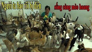 [Tập 1] Người phụ nữ 20 năm sống cùng hàng trăm con mèo hoang