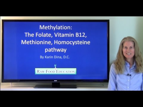Why is vitamin B12 so important for our health? How is vitamin B12 used in the human body?
