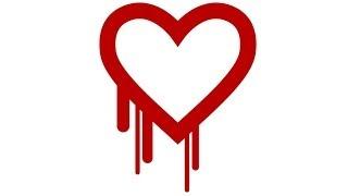 Heartbleed-Bug bei SSL: Was muss ich tun?