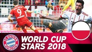 Robert lewandowski: poland's world cup hope | fc bayern in russia