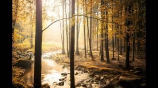 Tiesto & Dyro feat  Krewella   Alive Paradise Ft Dj MItesh