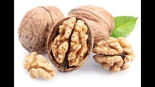 Для чего необходимо замачивать грецкий орех в горячей воде при проведении стратификации thumbnail