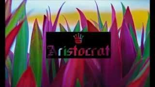 Felix Jaehn - Sommer Am Meer (Original Mix)