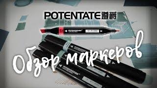 Обзор маркеров Potintate