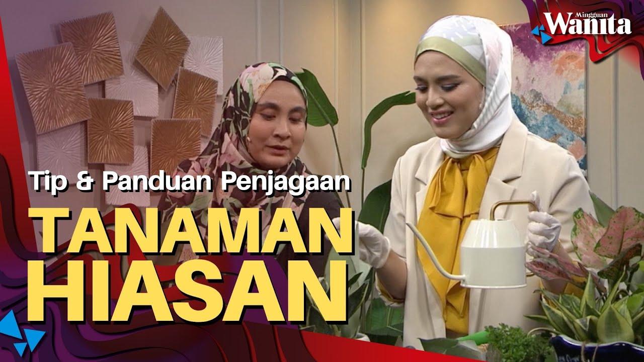 Panduan Penjagaan Tanaman Hiasan (Indoor Plant) | Mingguan Wanita 24 Jun