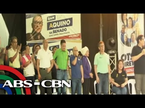 Fear of 'narco-list' erodes support for opposition campaign - Alejano | ANC