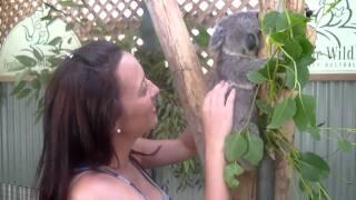 Fazendo carinho no koala baby...muito foto!!!