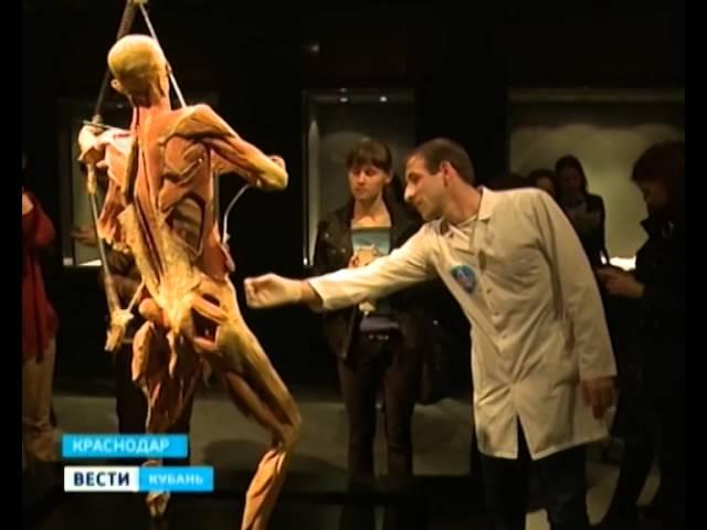 Урок анатомии аллы юривны