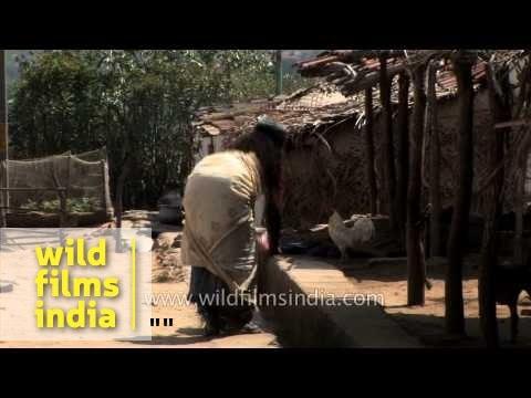 Village life of rural India