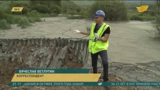 видео Оценка экологического ущерба