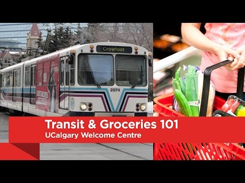 UCalgary Welcome Centre: Transit & Groceries