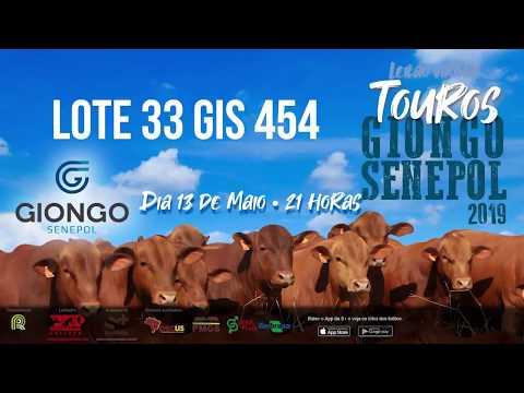 LOTE 33 GIS 454