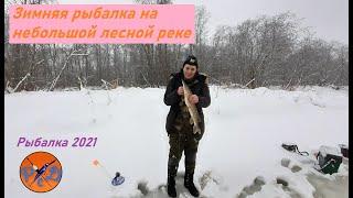 Зимняя рыбалка 2021 Рыбалка на небольшой лесной реке Разведка боем Открытие зимнего сезона 2021