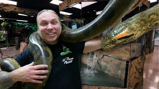 MOVING MY HUGE ANACONDA INTO A NEW GIANT CAGE AT THE REPTILE ZOO!! Build Day #14 | BRIAN BARCZYK