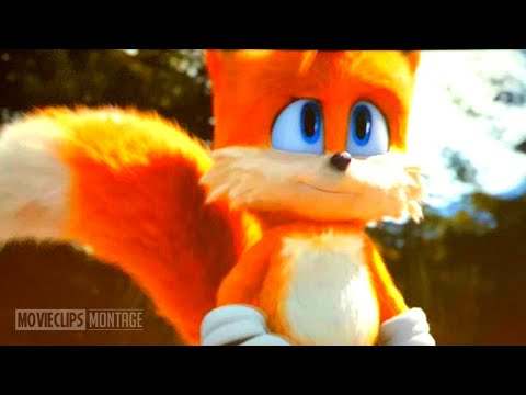 Sonic The Hedgehog Ending Tails Post Credit Scene Movie Clip Full Youtube