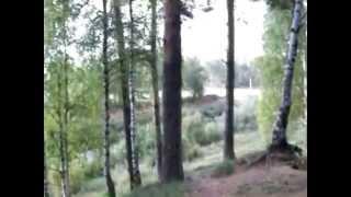 Песня - Журавли