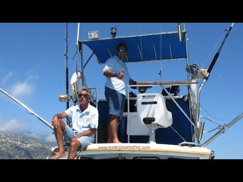700 Lbs Blue Marlin - Madeira 2016