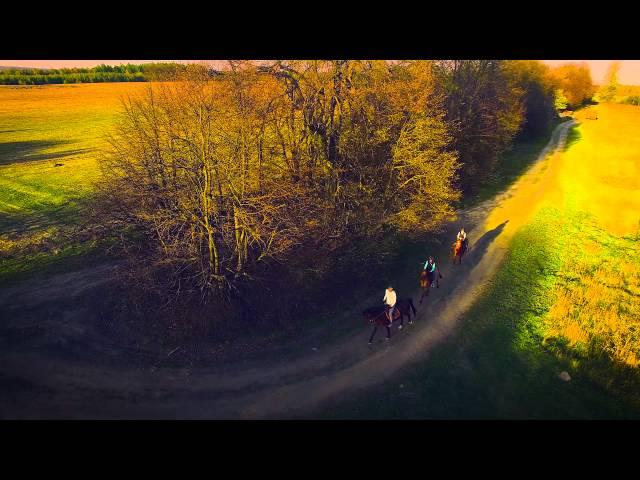 Riding horses story