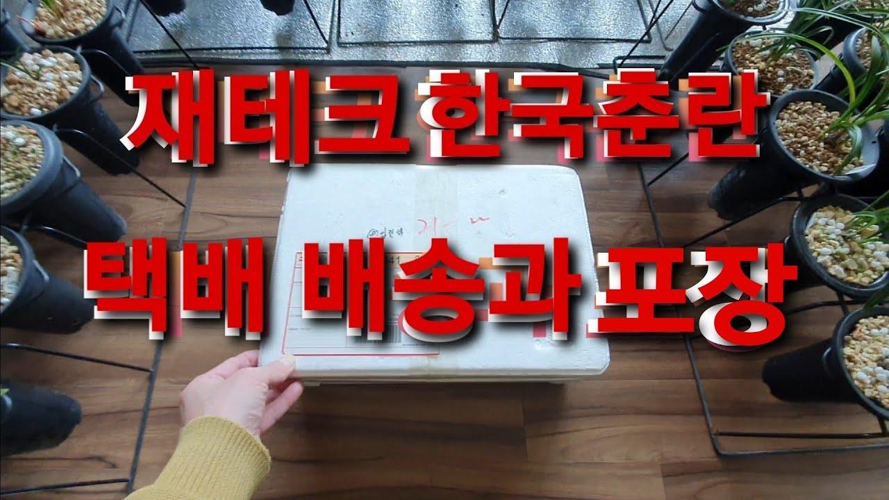 재테크 한국춘란 택배 배송