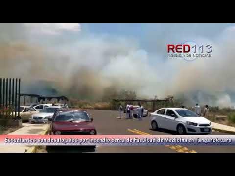 VIDEO Joven mujer fallece atropellada en Tangancícuaro