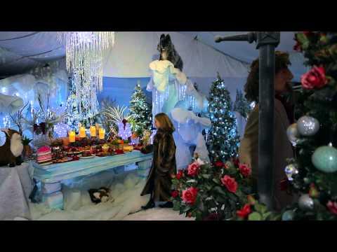 2014 - Santa's Grotto at Chessington Garden Centre