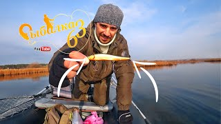 Давно такой рыбалки не было щука начала жрать рыбалка на спиннинг осенью