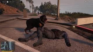 GTA 5 - Dogs as Bodyguards