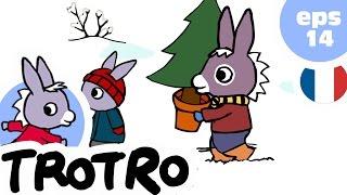 TROTRO - EP14 - Trotro et le sapin de noel