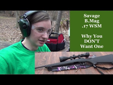 Savage B.Mag 17WSM - Why You DON'T Want One