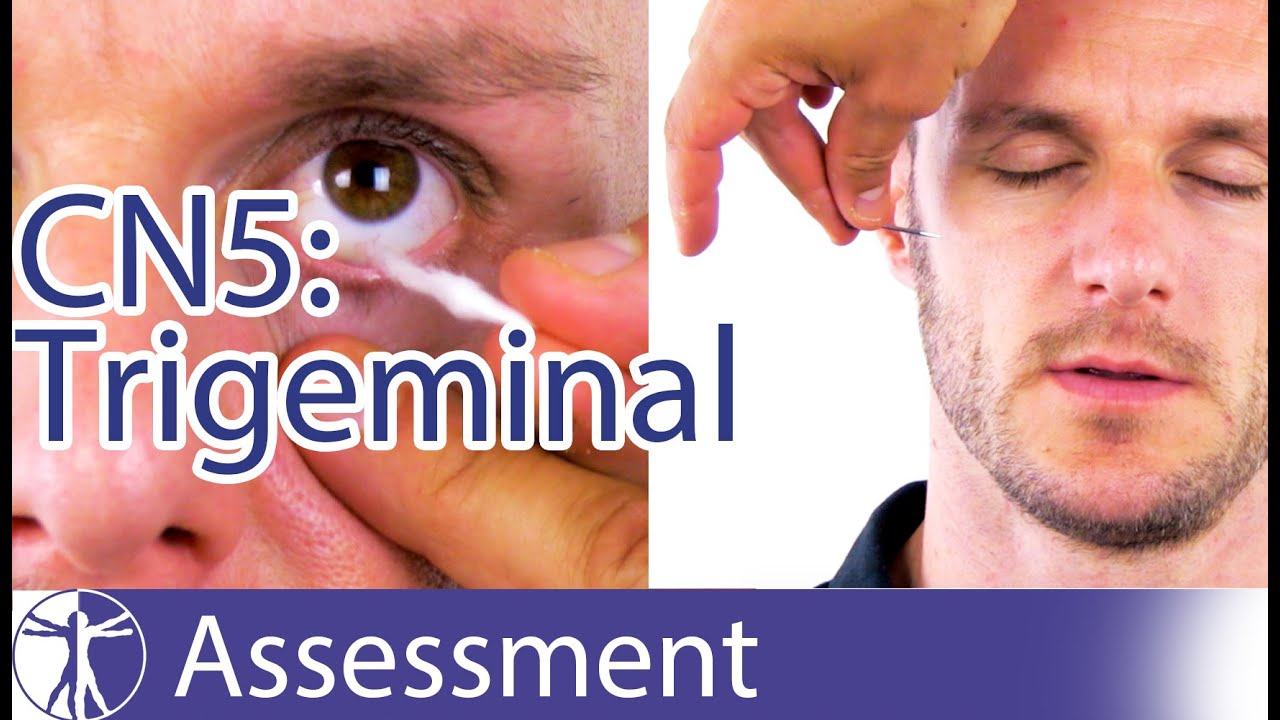 Cranial Nerve 5   Trigeminal Nerve Assessment for Physiotherapists