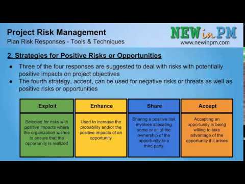 Risk strategy options pmp