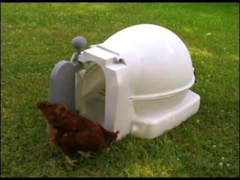 Barn Style Chicken Coops For Sale In Utah Doovi